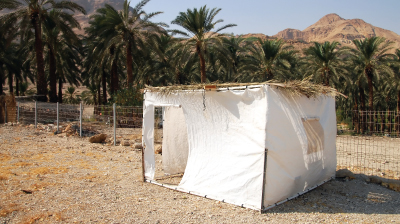 THE SHELTER OF THE SUKKAH: A REFUGE OF FAITH